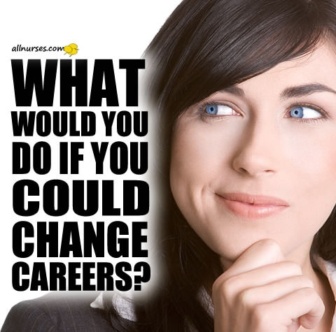 what-would-you-do-if-you-could-change-careers.jpg.9d7f43770ece2d4fd7eb8bfab686ade5.jpg