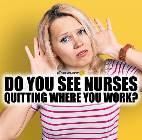 do-you-see-nurses-quitting.jpg.251b035283af086a3e9c3e6b1a04cd0e.jpg