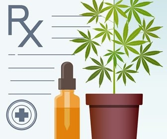 Medical Marijuana: Understanding the Six Principles of Essential Knowledge