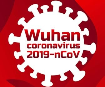 Wuhan Coronavirus: Month Two