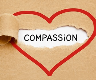 Need a Compassion Tuneup?