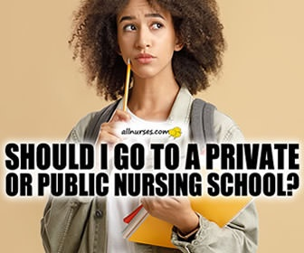 Public or Private:  Which is the Best Nursing Program?